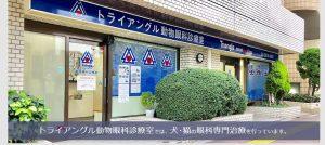 トライアングル動物眼科診療室